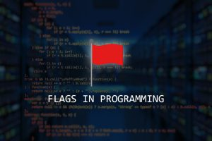 how to use flags in programming